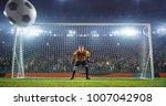 soccer goalkeeper in action on... | Shutterstock . vector #1007042908