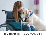 Stock photo girl in wheelchair with service dog indoors 1007047954