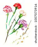 watercolor card with a picture... | Shutterstock . vector #1007073916