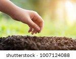 hands of children planting a...   Shutterstock . vector #1007124088