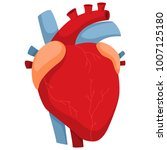 human heart with arteries and... | Shutterstock .eps vector #1007125180