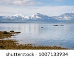 panorama on the beaches of... | Shutterstock . vector #1007133934