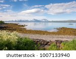 panorama on the beaches of... | Shutterstock . vector #1007133940
