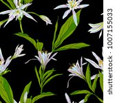 hand drawn flowers lilies on a... | Shutterstock .eps vector #1007155033