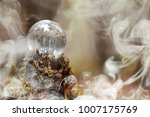 Stock photo a crystal ball in the smoke a magical accessory in the woods on the stump ritual ball of witches 1007175769