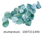 green bouquet  branches and... | Shutterstock . vector #1007211340