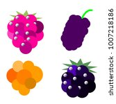 vector image set for raspberry  ... | Shutterstock .eps vector #1007218186