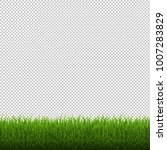 grass border isolated... | Shutterstock .eps vector #1007283829