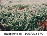 close up photograph of ice and...   Shutterstock . vector #1007316670