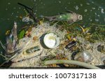 dead fish float in the waste... | Shutterstock . vector #1007317138