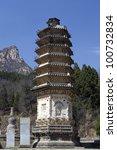 silver mountain and pagoda... | Shutterstock . vector #100732834