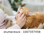 Stock photo pets hygge and people concept close up of female owner stroking red tabby cat in bed at home 1007357458