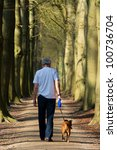 Stock photo man and dog walking in forest lane 100736704