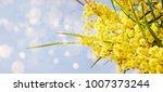 fresh flowers. spring... | Shutterstock . vector #1007373244