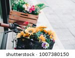 vintage bicycle with flowers on ... | Shutterstock . vector #1007380150