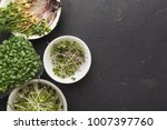 assortment of micro greens at... | Shutterstock . vector #1007397760