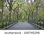 """""""Spring Sycamore Trees"""" An early Spring view of the Central Park in The Mall area. - stock photo"""