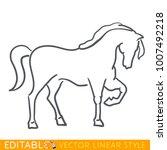 horse zodiac sign. horse...   Shutterstock .eps vector #1007492218