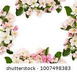 frame of flowers apple tree on... | Shutterstock . vector #1007498383