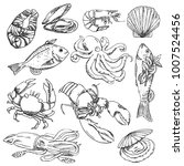 vector illustration background  ... | Shutterstock .eps vector #1007524456