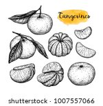 mandarin orange set. ink sketch ...   Shutterstock .eps vector #1007557066