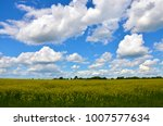beautiful summer landscape  ... | Shutterstock . vector #1007577634