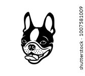 Boston Terrier Dog   Vector...
