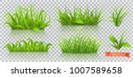 spring  green grass. 3d... | Shutterstock .eps vector #1007589658