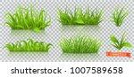 spring grass 3d vector | Shutterstock .eps vector #1007589658