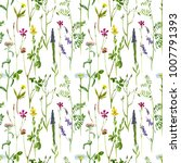 seamless pattern with... | Shutterstock . vector #1007791393