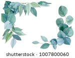 eucalypt watercolor  greeting... | Shutterstock . vector #1007800060