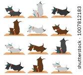 background scottish terrier... | Shutterstock .eps vector #1007812183