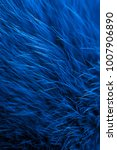 Fabric Texture Fur Blue...