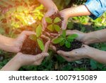 Small photo of Hands People gardener and kidsTeam Work family Cupping young tree Plant Nurture Environmental and reduce global warming earth, outdoor education. Ecology Concept