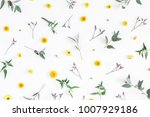 flowers composition. pattern... | Shutterstock . vector #1007929186