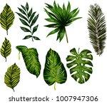 watercolor set of tropical... | Shutterstock .eps vector #1007947306