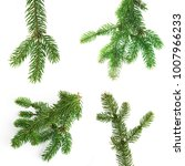 twig of spruce on a white... | Shutterstock . vector #1007966233