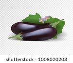fresh purple eggplants in... | Shutterstock .eps vector #1008020203