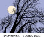trees in a moonlit night | Shutterstock .eps vector #1008021538