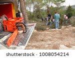 Eshtaol  National Park  Israel...