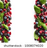 black blue and red berries... | Shutterstock . vector #1008074020