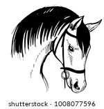 Stock vector horse s head hand drawn illustration converted to vector 1008077596