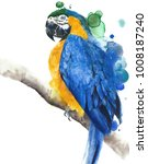 Parrot Macaw Blue And Yellow...