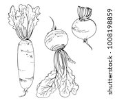 daikon radish  beet drawn by a... | Shutterstock .eps vector #1008198859