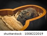 ancient mummy in the... | Shutterstock . vector #1008222019