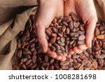 hands holding freshly harvested ... | Shutterstock . vector #1008281698