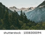 coniferous forest and mountains ... | Shutterstock . vector #1008300094