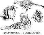 vector drawings sketches... | Shutterstock .eps vector #1008300484