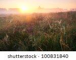 Sunrise Over Spider Web