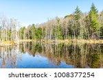 Lake Landscape Pond Marsh...